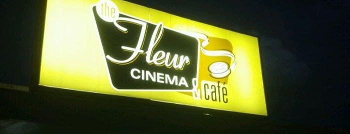 Fleur Cinema & Café is one of Entertainment: USA.