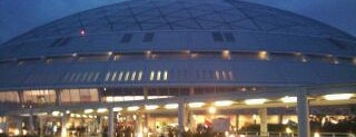 Nagoya Dome is one of 読売巨人軍.