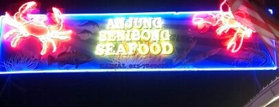 Senibong Village Seafood is one of Johor Trip.