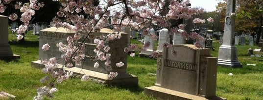 Historic Congressional Cemetery is one of Members.