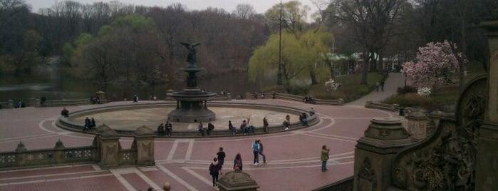Central Park is one of Mis lugares más queridos !.