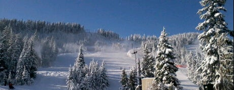 Cypress Mountain Ski Area is one of Skigebiete.