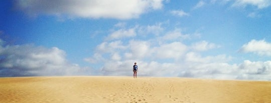 Jockey's Ridge State Park is one of Awesomesauce.