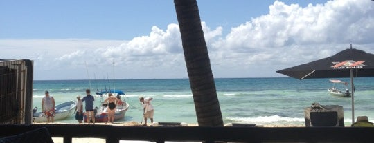 The Blue Parrot Beach Club is one of Playa del Carmen Cancún.