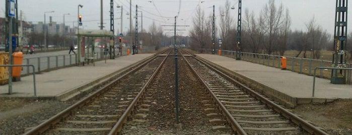 Járműtelep utca (14) is one of Pesti villamosmegállók.