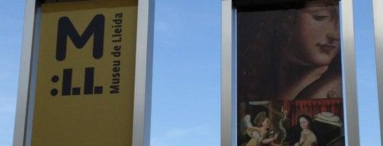 Museu De Lleida is one of Museos de Lleida.