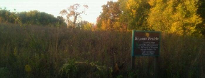 Biocore Prairie is one of Fresh Air Around Madison, WI.