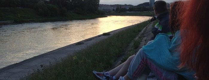 Baltasis tiltas | White bridge is one of Vilnius: student edition.