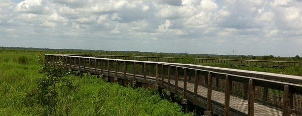 Paynes Prarie Preserve State Park is one of Favorites in Gainesville.