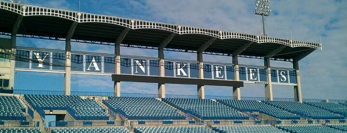 George M Steinbrenner Field is one of Grapefruit League Stadiums.