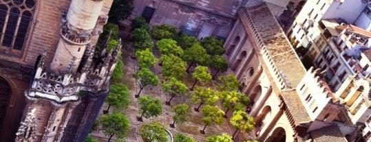 Seville Cathedral is one of 101 cosas que ver en Andalucía antes de morir.