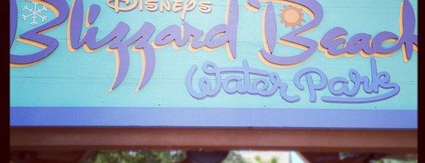 Disney's Blizzard Beach Water Park is one of Walt Disney World Parks.