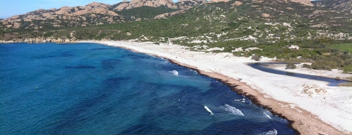 Plage d'Ostriconi is one of Corsica.