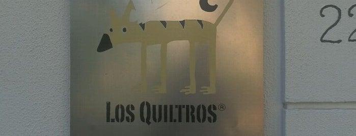 Los Quiltros is one of Agencias de publicidad en Chile.
