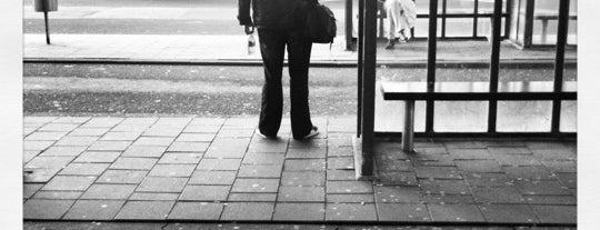 Busstation Kralingse Zoom is one of Public transport NL.