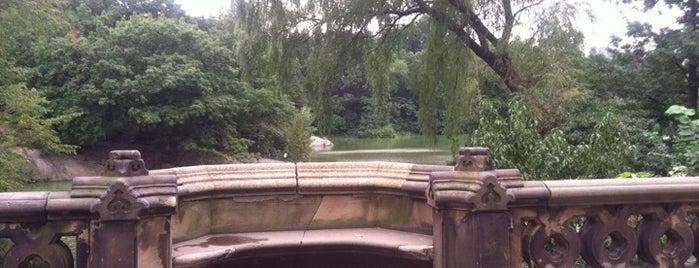 Balcony Bridge Central Park is one of Ferias USA 2012.
