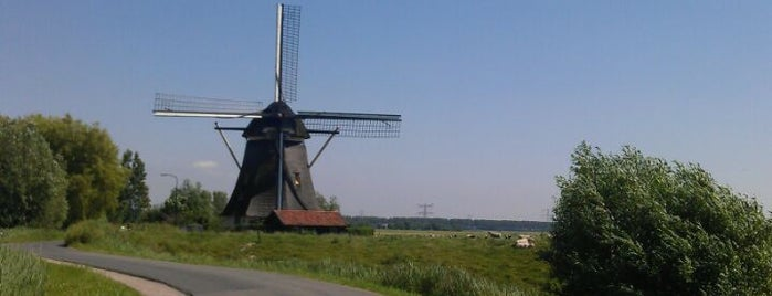 Oostzijdse Molen / Delphine is one of Dutch Mills - North 1/2.