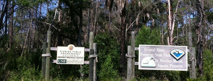 Crystal River Preserve State Park is one of Spring Break 2012.