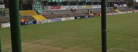 Jupiler Pro League and Belgacom League - 2013-2014