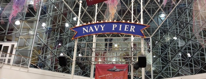 Navy Pier IMAX Theatre is one of Traveling Chicago.
