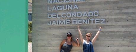 Jaime Benítez National Park is one of My Places.