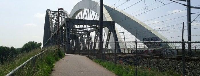 Werkspoorbrug is one of Bridges in the Netherlands.