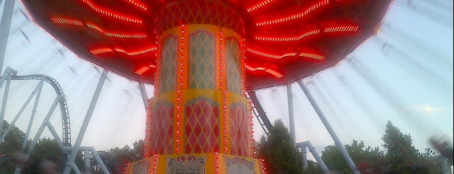 Wave Swinger is one of Favorite Arts & Entertainment.