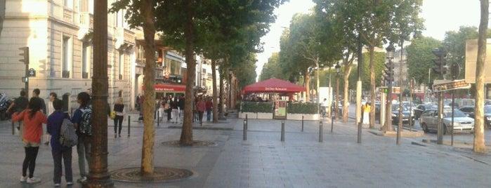 Avenue des Champs-Élysées is one of Shopping Paris.