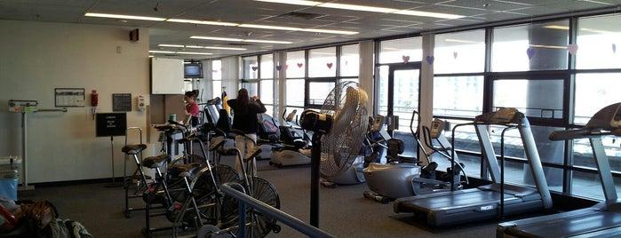 The University Of Toledo Medical Center Cardica Rehabilitation is one of Utmc.