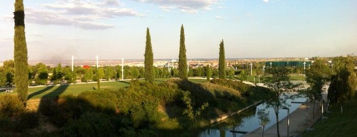 Parque Juan Carlos I is one of @ Madrid (MD, España).