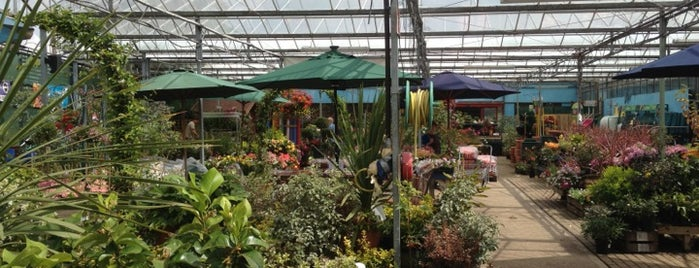 Hearts Delight Garden Centre is one of Guide to Manningtree's best spots.