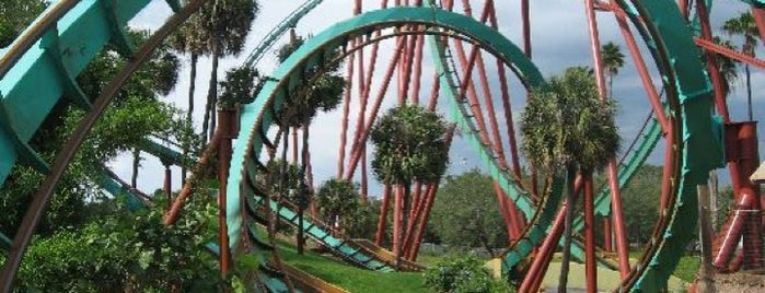 Busch Gardens Tampa is one of Favorites.