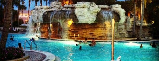 Sheraton Vistana Villages Resort Villas is one of Orlando's must visit!.