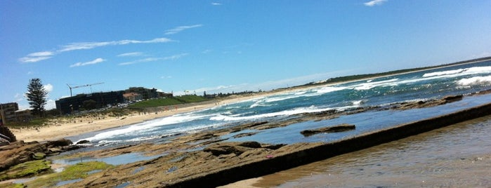 Cronulla Beach is one of Harbour City Badge.