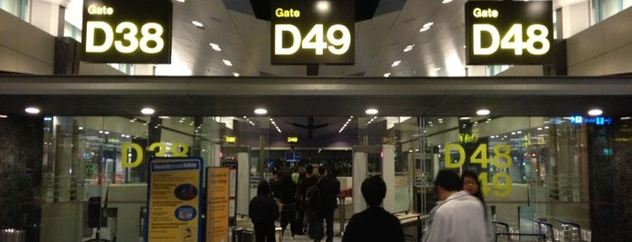 Gate D48 is one of SIN Airport Gates.