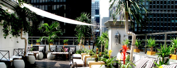 Ava Lounge is one of Outdoor.