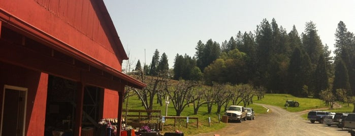 Rainbow Orchards is one of The Best of Apple Hill.