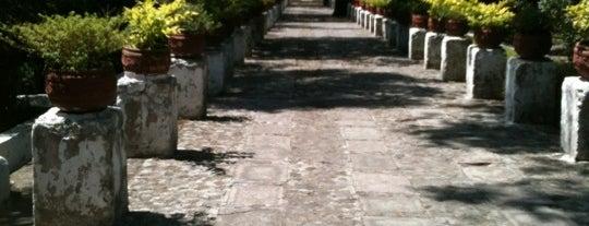 Centro Cultural Jardín Borda is one of Guide to Cuernavaca's best spots.