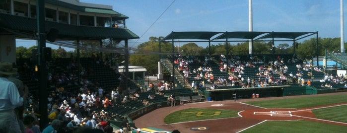 McKechnie Field is one of Sarasota #4sqCities.