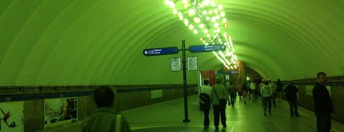 Метро «Озерки» (metro Ozerki) is one of Метро Санкт-Петербурга.