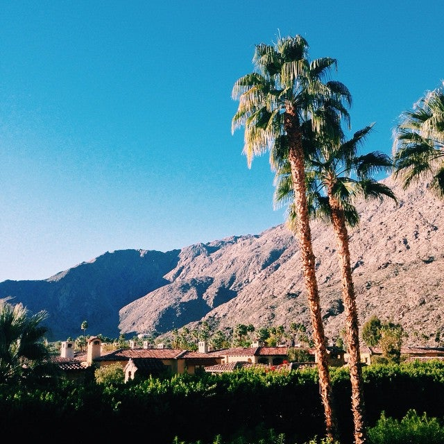 Photo of The Willows Historic Palm Springs Inn