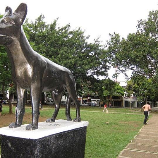 Parque Del Perro