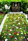 Nirvana Memorial...