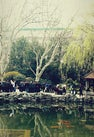 人民公园 | People'...