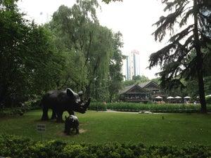 静安公园 Jing'an Park