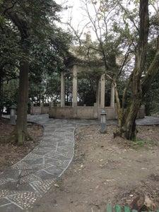 中山公园 | Zhongshan Park