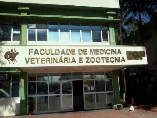 Faculdade de Medicina Veterinária e Zootecnia (FMVZ-USP)