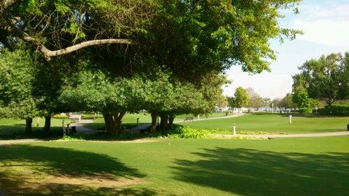 Creek Park حديقة الخور