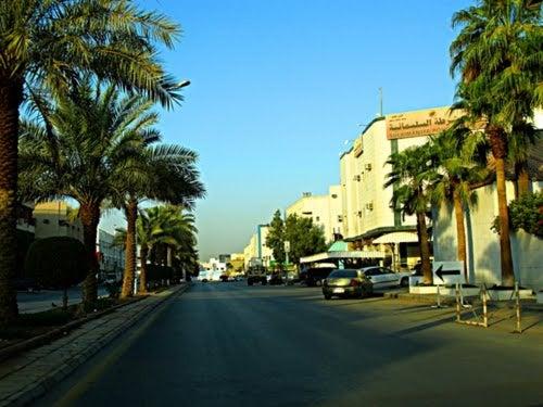 Al-Sulimaniyah District | حي السليمانية