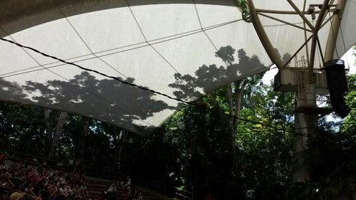 Rainforest Fights Back Show